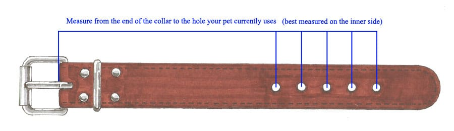 Measure a collar