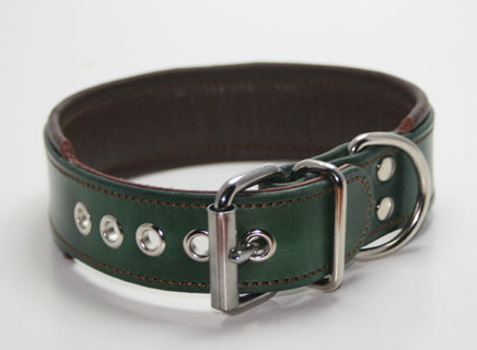 Green and brown dog collar